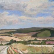 Towards Kingley Vale