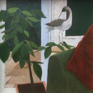 Interior with bird 1.JPG