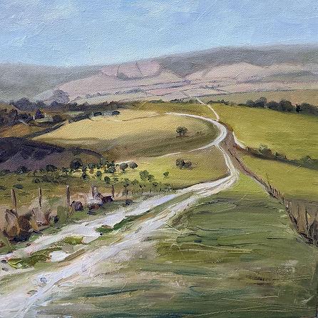 Above Amerberley South Downs Way.jpg