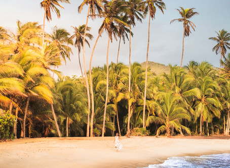 Tayrona National Park Guide: Everything You Need To Know