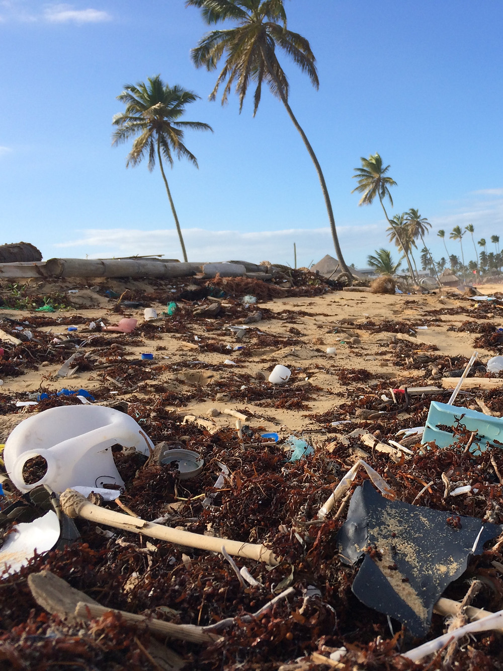 How to avoid buying plastic bottles while traveling