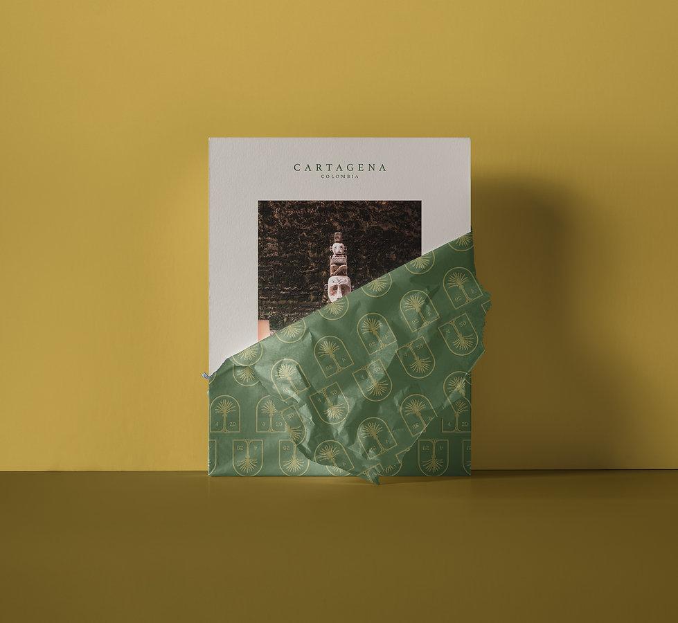 Amarla-Branding-Photo-Reveal.jpg