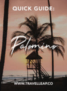 Quick-Guide-Palomino.jpg