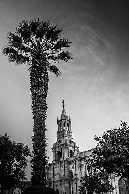 5 great things to do in Arequipa Church Main Square Palm Trees
