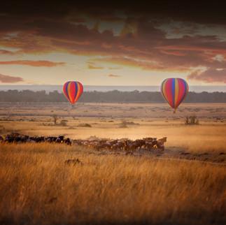 Hot air balloon over the savanah