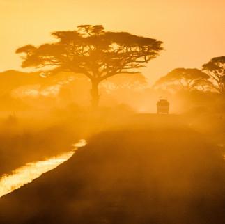Golden hour sunset drives