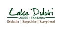 LakeDulutiLOdge.png