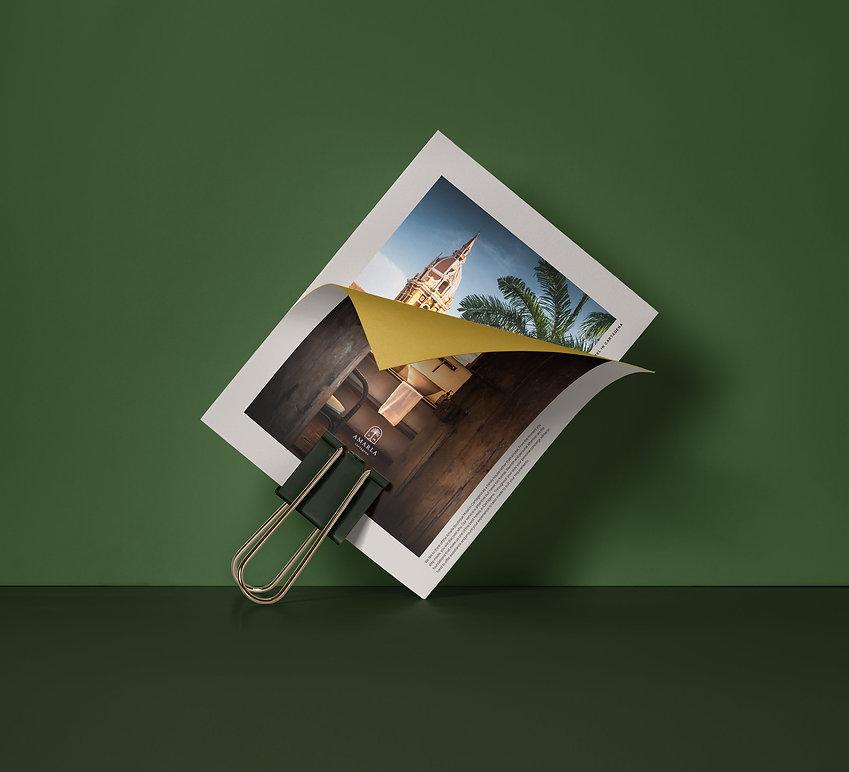 Amarla-Brand-Photo.jpg