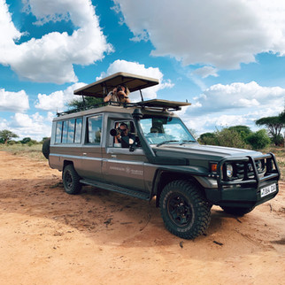 Our safari Vehicles in action