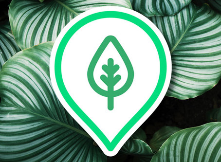 Our Travel Leap Happy Earth Icon