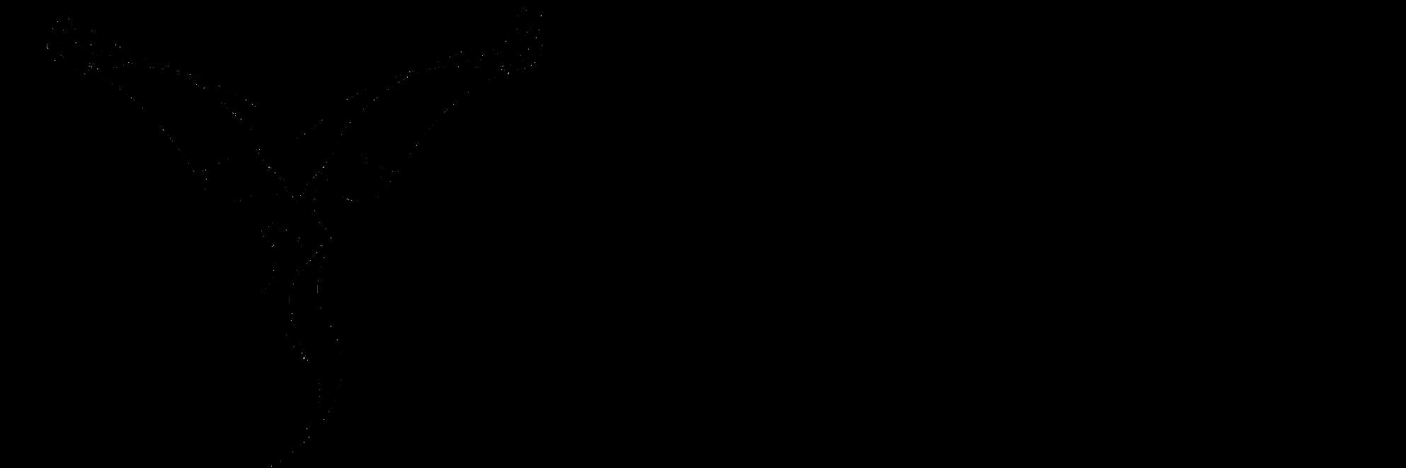 WhitePHOENIXarts