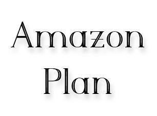 Amazon Plan.jpg