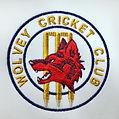 Wolvey Cricket Club.jpg