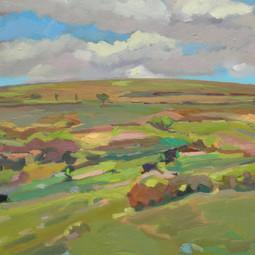 Dartmoor No 2