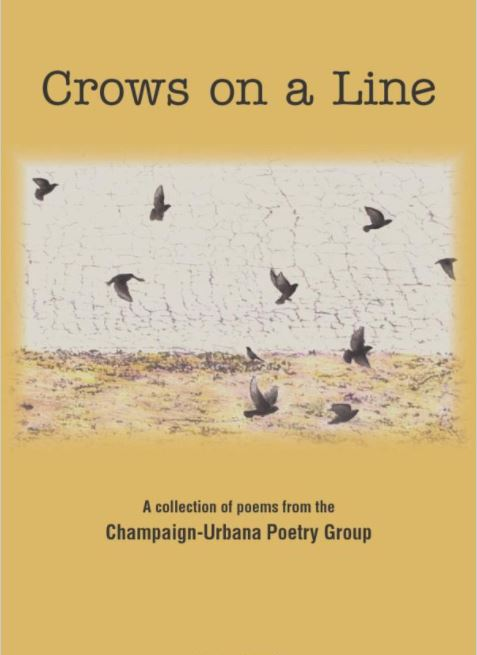 Crows on a Line cover