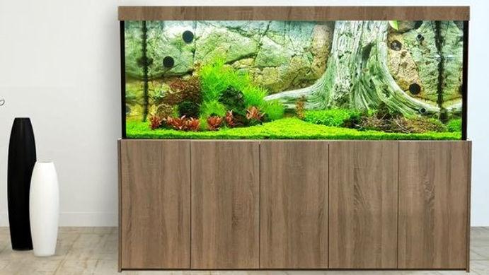 Bildquelle:Aquarium-Kombination Relax ©Tim Stenzel, Aquarienkontor