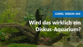 Wird das wirklich ein Diskus-Aquarium?