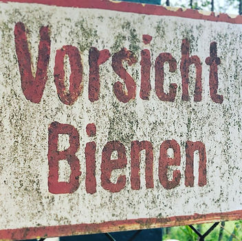 www.diskusmummy.de Bienen (3).jpeg