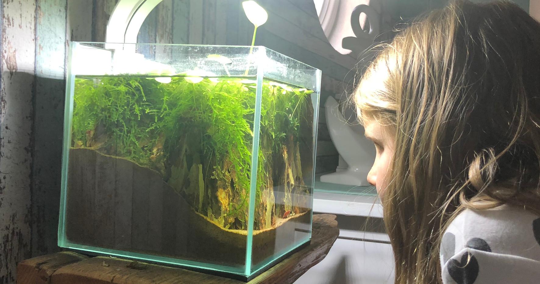12 Liter NanoScape www.diskusmummy.de (6