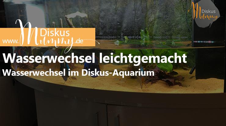 Wasserwechsel im Diskus-Aquarium leicht gemacht!