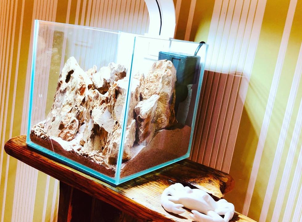 12 Liter NanoScape www.diskusmummy.de (2
