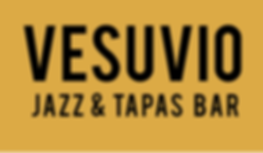 Vesuvio logo large 2630x1529.png