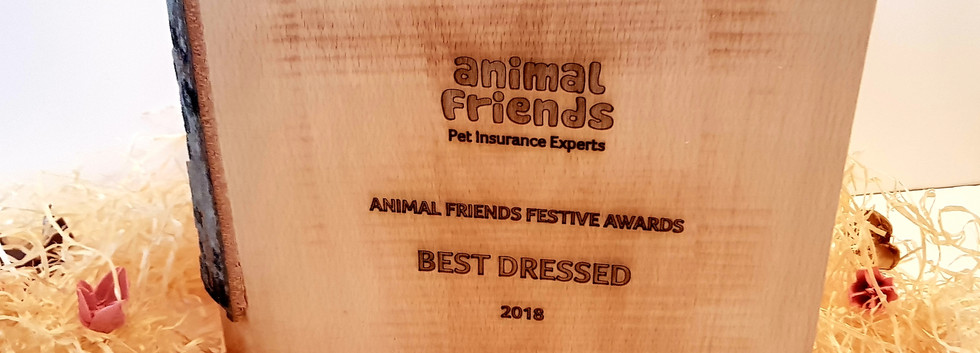 Animal Friends Insurance Awards