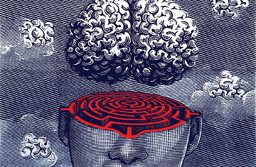 THE BRAIN : THE MISTERY OF CONSCIOUSNESS