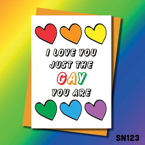 Rude LGBTQ Birthday card. I love you just the gay you are. SN123.