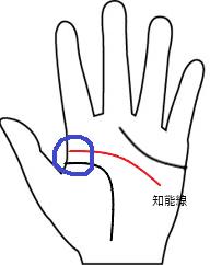 知能線1(離れ型)
