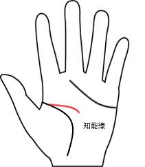 知能線4(長さ-短い線)
