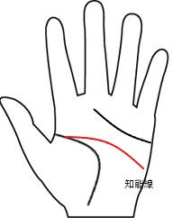 知能線3(長さ-長い線)