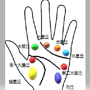 手の平の「丘」