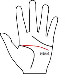 知能線5(向き-横に伸びる線)