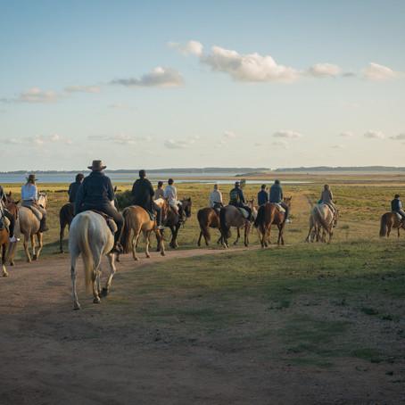 MOONLIGHT HORSEBACK RIDE EXPERIENCE