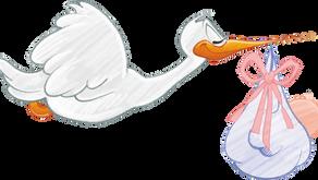 על דמי לידה ומס הכנסה