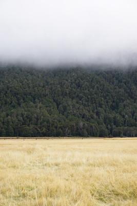 Fjordland, New Zealand