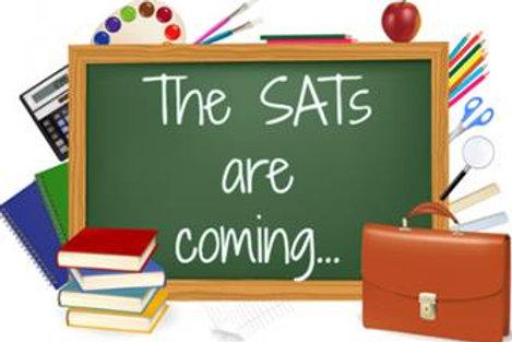 Intensive SAT's Year 6