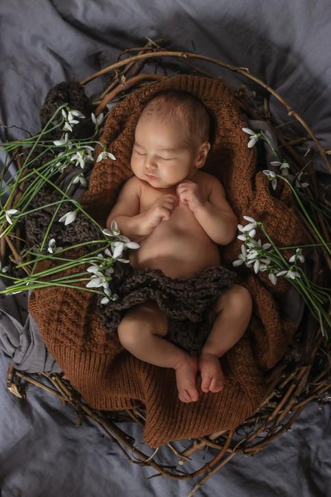 Newborn Shooting Natur Frühling 11.jpg