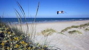Playas Españolas verano 2020