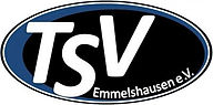tsv_logo_high.jpg