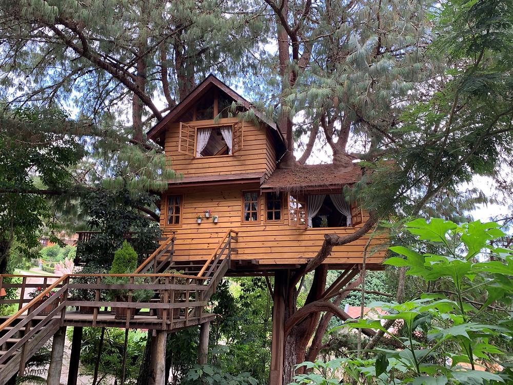 Casa na árvore | Parque Amantikir Campos do Jordão| SP