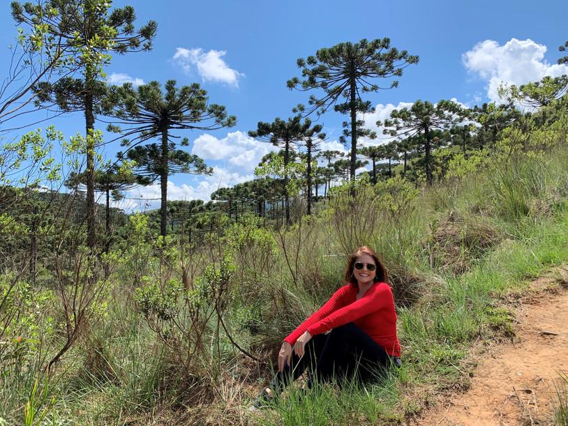 Horto Florestal Parque   Campos do Jordão-SP