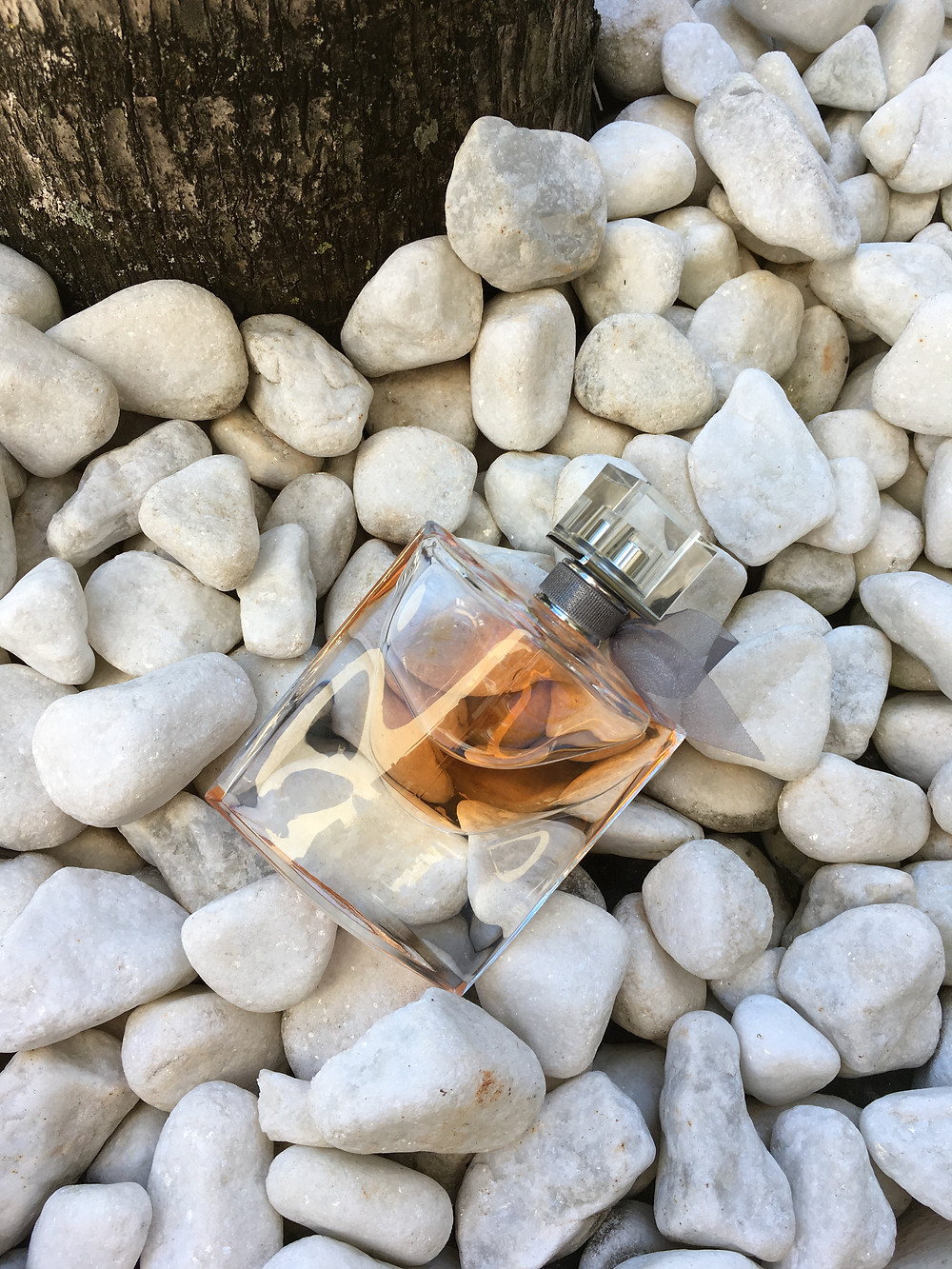 Resenha Eau de Parfum La Vie Est Belle Lancôme
