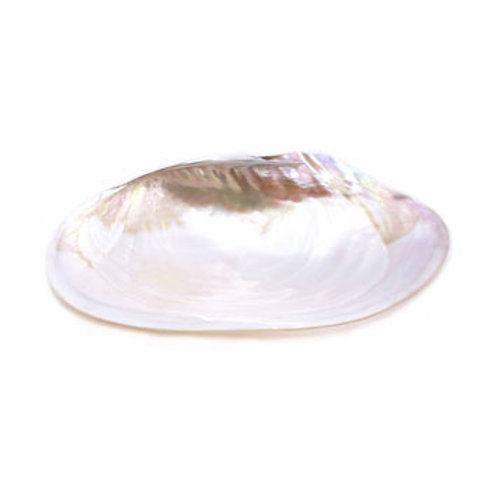Mother Of Pearl Caviar Plate Large