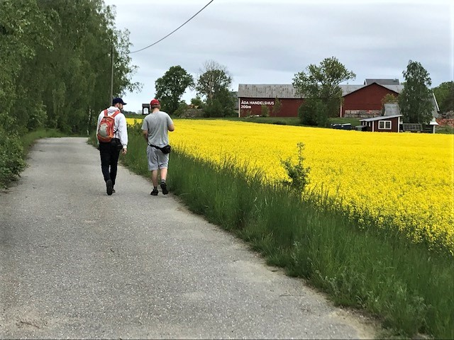 Promenad till Trosa
