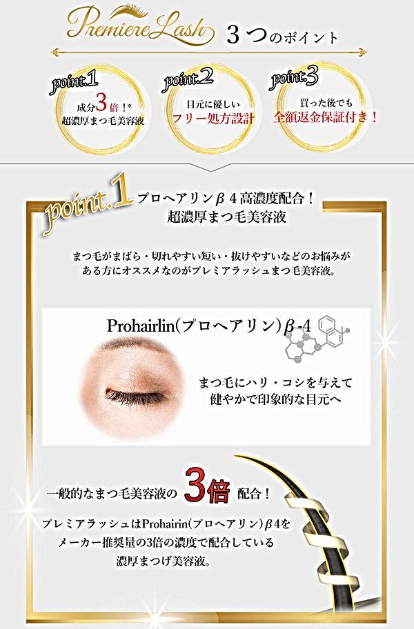 紹介コンテンツ01プレミアラッシュ-5.jpg
