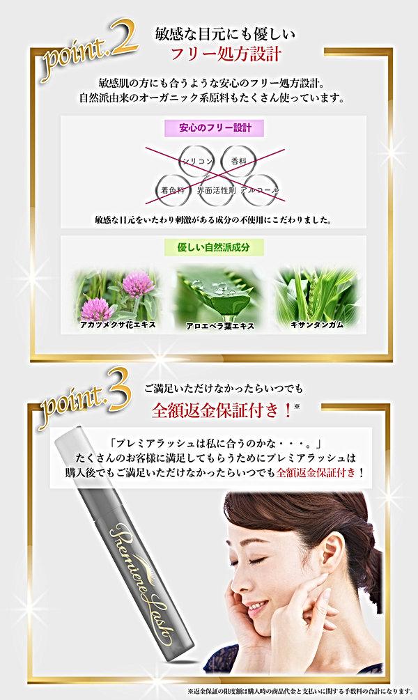 紹介コンテンツ02プレミアラッシュ-3.jpg