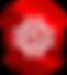premios-melhor-operador-pc-guia-meo-2020