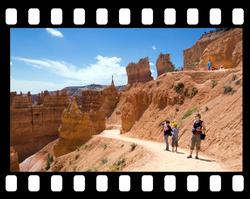 bryce canyon trail